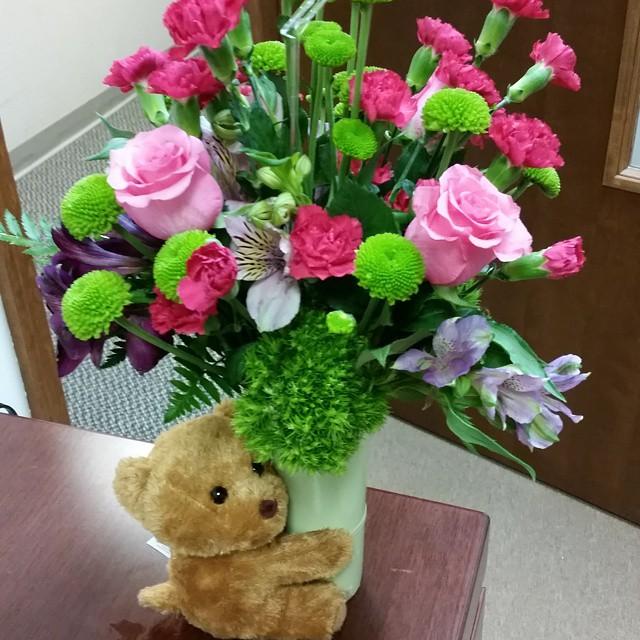 flowers bear pic