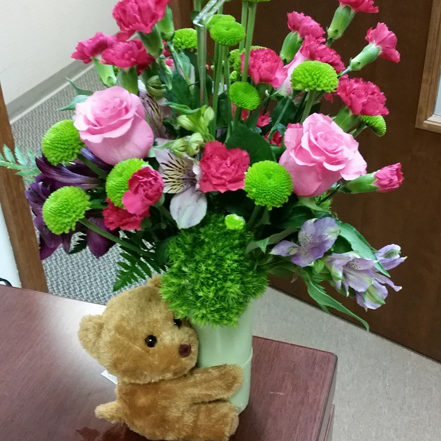 flowers bear pic